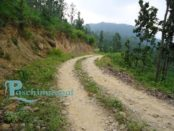 सुर्खेत–भुरीगाउँ सडक खण्ड अन्तरगतको हरिहरपुर गाविसमा खोलिएको ट्रयाक । तस्वीर सौजन्य विनोद शाही ।